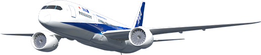 All Nippon Airways Reservations