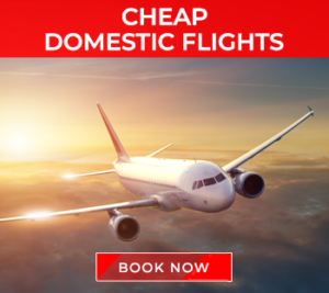 domestic-flights